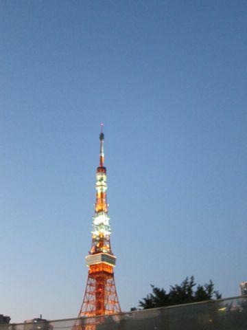 東京タワー 六本木 東京タワー ライトアップ 東京タワー 最寄り駅 ノッポン兄弟 東京タワー 高さ 東京タワー 料金 東京タワー 誕生日 東京タワー ピンク 2.jpg