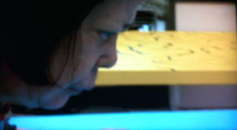 草間彌生 NHKスペシャル 水玉の女王草間彌生の全力疾走 立花ハジメ バンビ 草間彌生 ルイヴィトン 草間彌生 水玉 草間彌生 かぼちゃ Kusama Yayoi LOUIS VUITTON 1.jpg