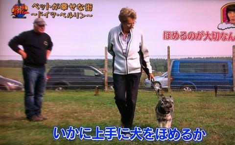 地球イチバン 地球でイチバン ペットが幸せな街 ドイツ・ベルリン ノーリード 電車に乗れる 犬は同僚 動物保護法 犬の保護に関する規則 犬の社会化 6.jpg