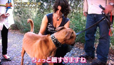 地球イチバン 地球でイチバン ペットが幸せな街 ドイツ・ベルリン ノーリード 電車に乗れる 犬は同僚 動物保護法 犬の保護に関する規則 犬の社会化 21.jpg