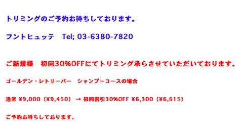 フントヒュッテトリミング価格犬トリミング都内犬シャンプー東京わんこカットスタイルモデル文京区トリミングサロンご新規様初回割引30%OFFトイプードルカット値段2.jpg