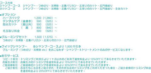 フントヒュッテトリミング価格犬トリミング都内犬シャンプー東京わんこカットスタイルモデル文京区トリミングサロンご新規様初回割引30%OFFトイプードルカット値段5.jpg