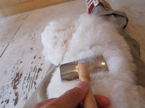 ビションフリーゼフントヒュッテ東京子犬こいぬかわいいビションフリーゼのいるお店文京区駒込ペットサロンhundehutteトリミングビションBichon Friseフランスの犬白い犬212.jpg