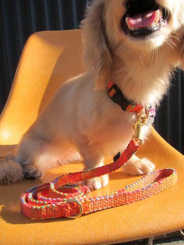 フントヒュッテオリジナル首輪カラーリードリーシュハーネスhundehutte東京かわいい犬の首輪Collarカラーわんこ首輪LeashリーシュHarnessハーネスおしゃれ犬胴輪犬モデルリード5.jpg