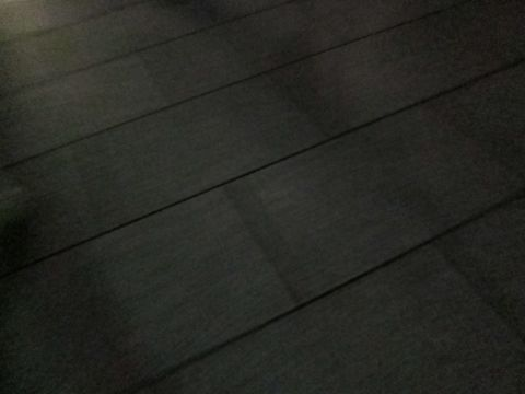 犬ペットホテルおあずかり文京区ビションフリーゼフントヒュッテ東京トリミングサロン関東hundehutteペットサロンビション画像ビションフリーゼトリミング料金15.jpg