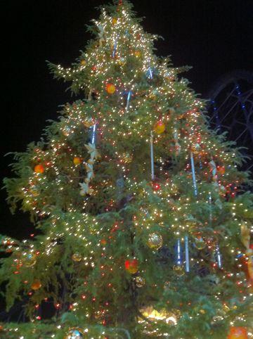 クリスマスイルミネーション2013ラクーアイルミネーション2013東京ドームシティラクーア東京のクリスマス夜景LaQua東京ドーム天然温泉スパヒマラヤ杉巨大クリスマスツリー東京3.jpg