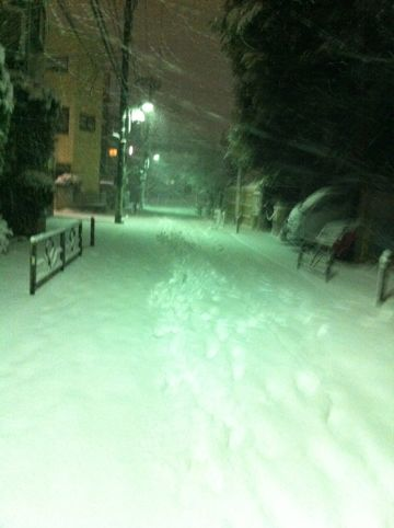雪 東京 大雪 2014年 天気 天気予報 明日 交通状況 道路状況 雪かき 雪かきスコップ 雪かき 道具 除雪 除雪スコップ プラスチック 鉄製 雪かき コツ 7.jpg