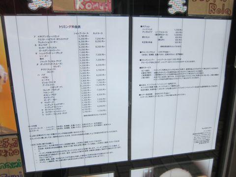 トリミング文京区フントヒュッテ東京ビションフリーゼカットスタイル画像トイプードルカットモデル関東レークランドテリアトリミングシーズービションアフロ13.jpg