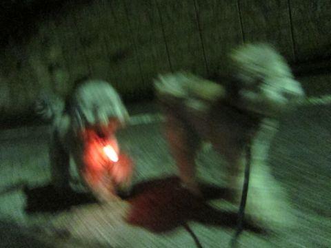 トイプードルトリミング文京区フントヒュッテトイプードルデザインカットモデル東京トイプーモヒカンカット画像トイプードルシルバー犬ハーブパック44.jpg