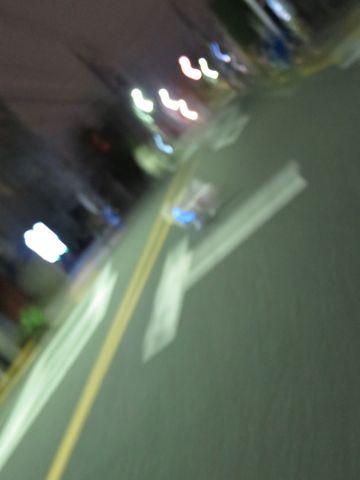 ホテル犬駒込フントヒュッテ東京ペットホテル文京区犬おあずかり様子おさんぽペットホテル料金ビションフリーゼトリミング画像ビションフリーゼカット都内16.jpg