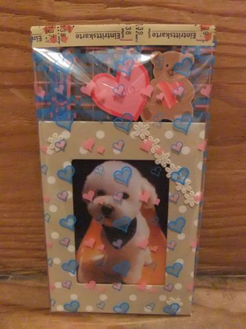 ビションフリーゼトリミング文京区フントヒュッテトリミングサロン東京ビションフリーゼカットスタイルモデル犬ハーブパック効果ペットサロン駒込犬歯磨き149.jpg