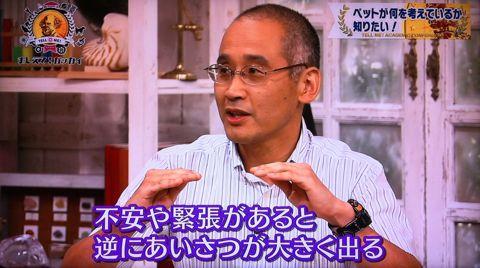 おしえて!ガッカイ ペットが何を考えているか知りたい! 種が違えばモノの認知の仕組みが異なるので完全に理解することはできません 日本動物心理学会員 14.jpg