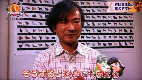 おしえて!ガッカイ ペットが何を考えているか知りたい! 種が違えばモノの認知の仕組みが異なるので完全に理解することはできません 日本動物心理学会員 23.jpg