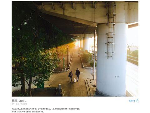 iPhone6で撮影 ワールドギャラリー iPhone6カメラ Jun I Apple - iPhone 6 - ワールドギャラリー 新聞掲載 広告 読売新聞2015年3月9日掲載 ビションフリーゼ PINOT 2.jpg