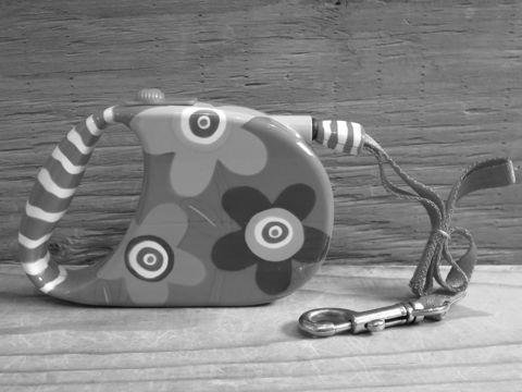 PYLONES ピローヌ パリ フランス生まれの雑貨ブランド デザイナーSophie Crea Crea 伸縮自在リード 犬用リード フレキシリード フントヒュッテ 東京 2.jpg