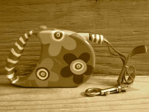 PYLONES ピローヌ パリ フランス生まれの雑貨ブランド デザイナーSophie Crea Crea 伸縮自在リード 犬用リード フレキシリード フントヒュッテ 東京 3.jpg