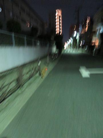 トイプードルトリミング駒込ペットホテル東京犬のおあずかり文京区フントヒュッテペットホテル料金都内ペットホテル様子おさんぽトイプートリミング画像21.jpg