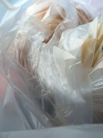 パーネ エ オリオ Pane & Olio パン おいしいパン 美味しいパン 護国寺 音羽 文京区 オリーブオイル イタリアの伝統的製法で作る本格的なイタリアパン 小麦 1.jpg