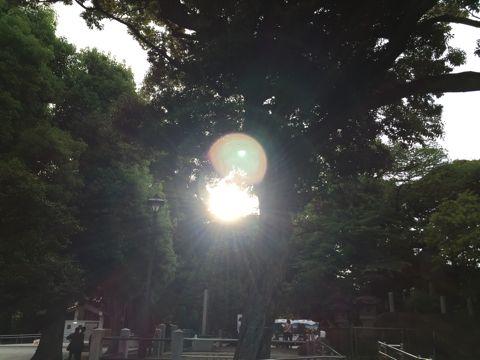 20150522_1.jpg