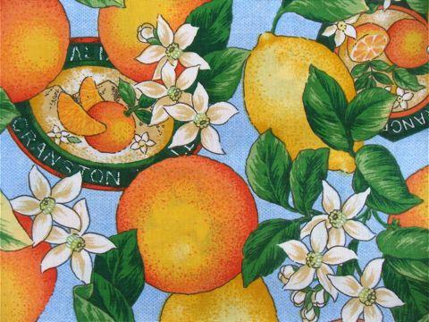 フントヒュッテオリジナル首輪カラーリードリーシュハーネス文京区ヴィンテージファブリック東京hundehutteビンテージ生地フルーツ柄生地Lemon & Orange Collar Leash Harness_8.jpg