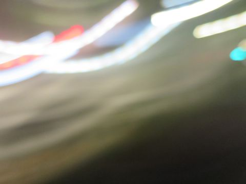 ミニチュアシュナウザーペットホテル様子おさんぽ犬おあずかり文京区フントヒュッテ東京シュナトリミング画像都内ペットホテル駒込ミニチュア・シュナウザーカットa.jpg