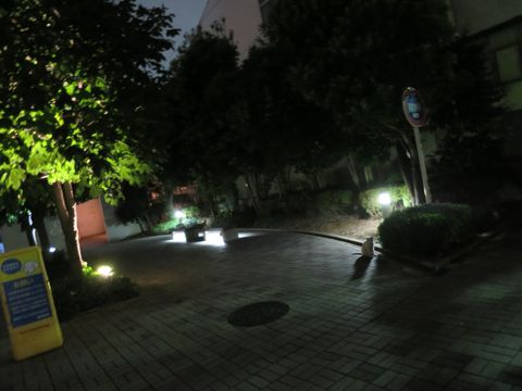 トイ・プードルペットホテル様子おさんぽ犬おあずかり文京区フントヒュッテ東京トイプードルトリミング画像都内ペットホテル駒込トイプーカットシルバー70.jpg