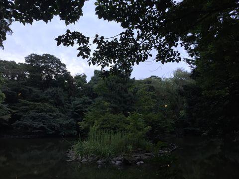 緑3.jpg