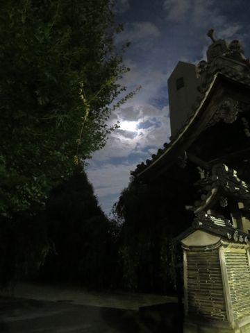 スーパームーン 2015年9月28日 1年のうちで月が地球に最も近づくタイミングと満月のタイミングが一致するため、普段より大きく、明るく見える。 画像 撮影 4.jpg