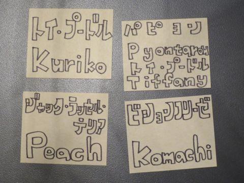 トリミングカットスタイル画像フントヒュッテ文京区犬カットモデル東京トイプードルカットスタイルビションフリーゼカット画像トイプーのビションカット駒込_11.jpg