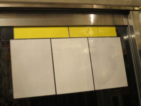 トリミングカットスタイル画像フントヒュッテ文京区犬カットモデル東京トイプードルカットスタイルビションフリーゼカット画像トイプーのビションカット駒込_13.jpg