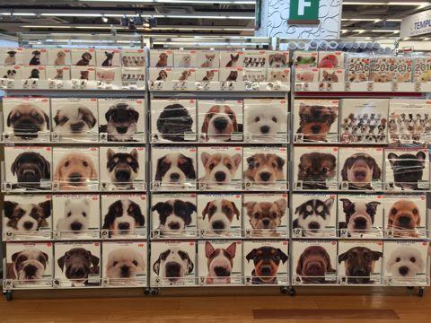 2016年カレンダー 犬 わんこ カレンダー THE DOG モデル 画像 種類 犬種 モデル犬 魚眼レンズで撮影 犬写真 売切れ 販売店 東京 東急ハンズ TOKYU HANDS 2.jpg