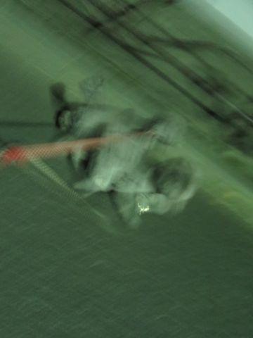 トイ・プードルペットホテル都内フントヒュッテ駒込犬おあずかり様子おさんぽ文京区hundehutte東京ペットホテルトイプードルシルバー画像ドッグホテル日記_62.jpg