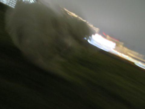 ビションフリーゼフントヒュッテ文京区駒込ビション子犬こいぬ赤ちゃん出産情報ビション父チャンピオン血統毛量オス子犬おんなのこ東京ビション画像性格かわいい_1054.jpg
