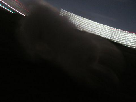 ビションフリーゼフントヒュッテ文京区駒込ビション子犬こいぬ赤ちゃん出産情報ビション父チャンピオン血統毛量オス子犬おんなのこ東京ビション画像性格かわいい_1138.jpg