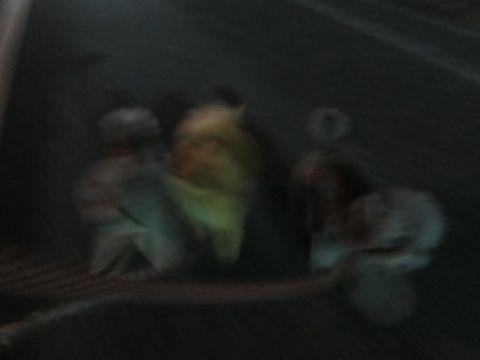 ポメラニアンペットホテル都内フントヒュッテ駒込犬おあずかり様子おさんぽ文京区hundehutte東京ドッグホテルポメラニアン犬ホテル料金ペットホテル様子画像_28.jpg