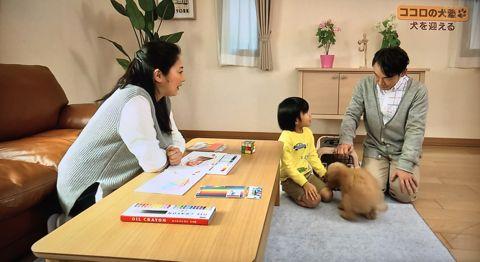 ココロの犬塾 NHK 趣味どきっ! ココロの犬塾  ? 空気の読めるワンちゃんをめざせ!?  高倉はるか (タカクラハルカ )講師 最初のしつけ その後の犬との暮らし 1.jpg