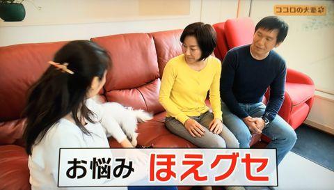 ココロの犬塾 NHK 趣味どきっ! ココロの犬塾  ? 空気の読めるワンちゃんをめざせ!?  高倉はるか (タカクラハルカ )講師 最初のしつけ その後の犬との暮らし 5.jpg