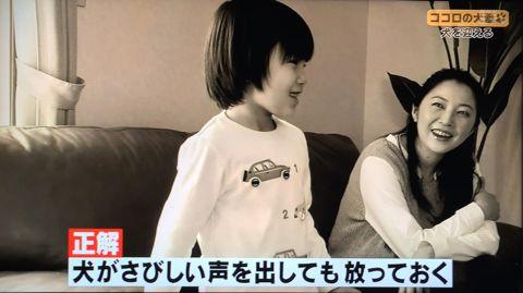 ココロの犬塾 NHK 趣味どきっ! ココロの犬塾  ? 空気の読めるワンちゃんをめざせ!?  高倉はるか (タカクラハルカ )講師 最初のしつけ その後の犬との暮らし 13.jpg