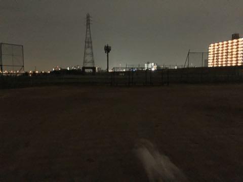 ビションフリーゼ子犬フントヒュッテこいぬ家族募集里親関東_2076.jpg