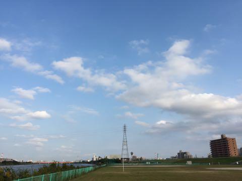 ビションフリーゼ子犬フントヒュッテこいぬ家族募集里親関東_1583.jpg