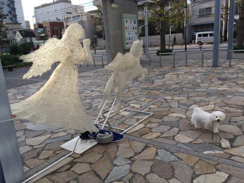 ビションフリーゼ子犬フントヒュッテこいぬ家族募集里親関東_2484.jpg