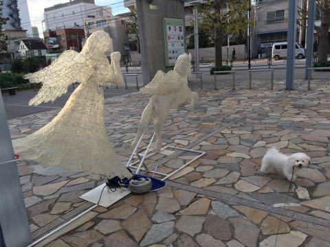 ビションフリーゼ子犬フントヒュッテこいぬ家族募集里親関東_2485.jpg