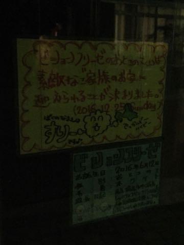 ビションフリーゼ子犬フントヒュッテこいぬ家族募集里親関東_2858.jpg