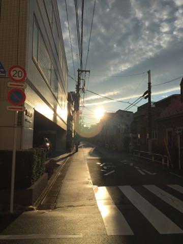 ビションフリーゼ子犬フントヒュッテこいぬ家族募集里親関東_3104.jpg