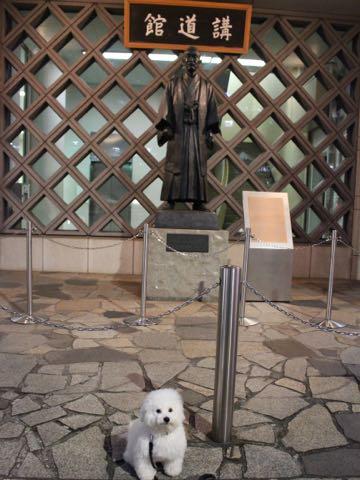 ビションフリーゼ子犬フントヒュッテこいぬ家族募集里親関東_3245.jpg