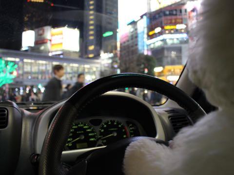ビションフリーゼ子犬フントヒュッテこいぬ家族募集里親関東_3291.jpg
