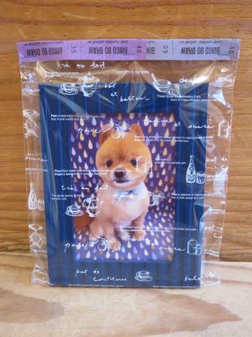 ミックス犬トリミング東京ポメラニアンとチワワのミックス犬画像ミックス犬トリミング料金文京区フントヒュッテ駒込サマーカットポメチワミックス犬_7.jpg