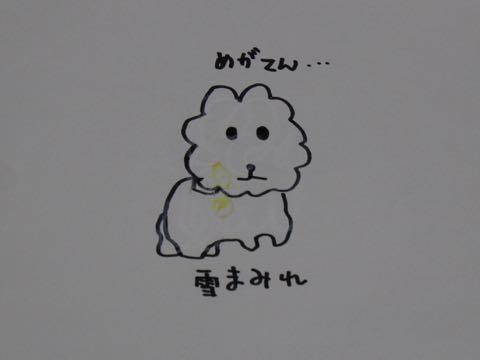 ビションフリーゼ子犬フントヒュッテこいぬ家族募集里親関東_3341.jpg