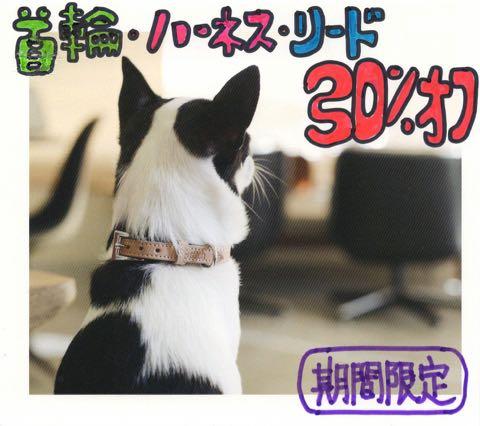 SALEフントヒュッテオンラインストアセール通販犬用品TIMESALE首輪ハーネスリードエンジェルアイズ涙やけ_3.jpg