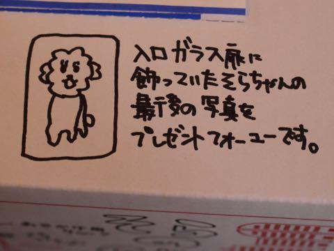 ビションフリーゼ子犬フントヒュッテこいぬ家族募集里親関東_3350.jpg